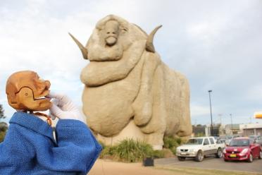 'Wow...Australia has big sheep!' - Igor's Travels
